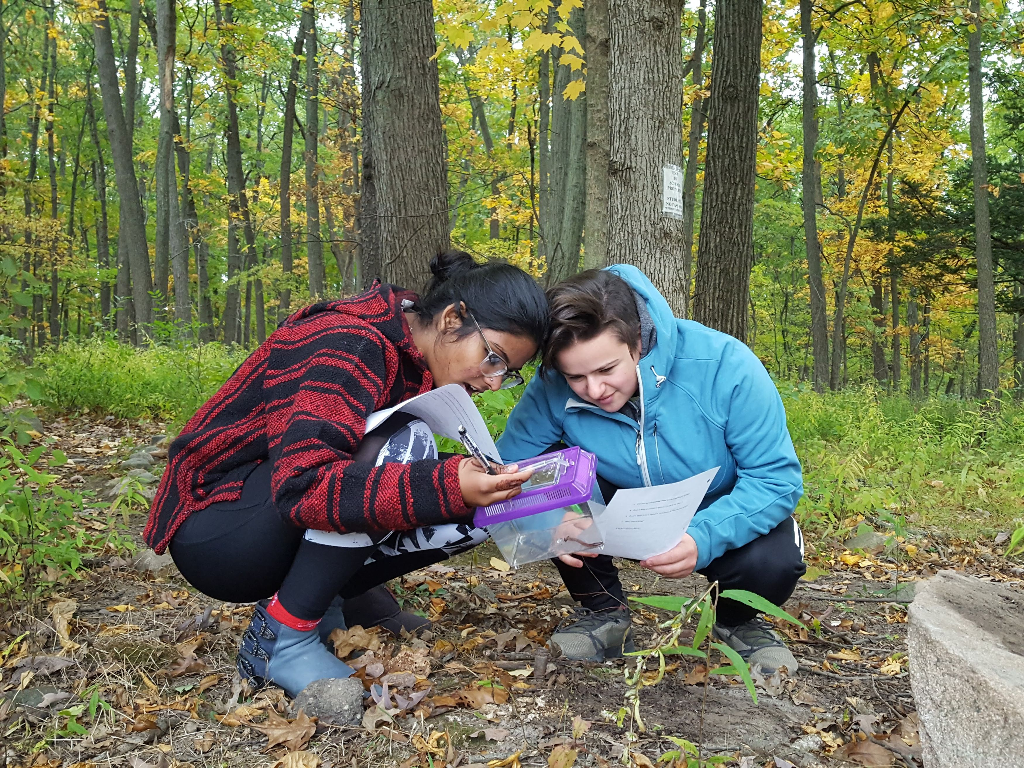 Two HS students studying insects outside