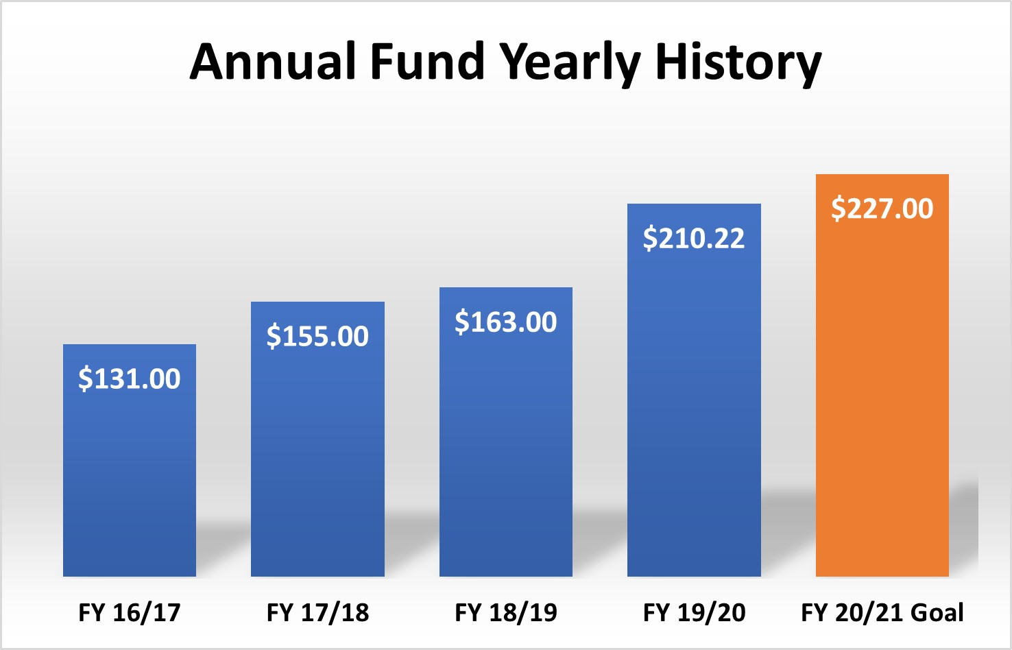 annual fund progress 5 years